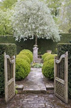 gates, stone path, round box hedging, sundial, gorgeous tree... amazing way to get your eye to move down a lawn.