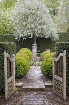 I love formal garden design. Formal Gardens, Outdoor Gardens, Courtyard Gardens, Longwood Gardens, The Secret Garden, White Gardens, Garden Gates, Garden Entrance, Garden Art