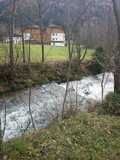 See 9 photos from 18 visitors to Hotel Almrausch. Plants, Fall, Flora, Plant