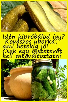 Kaja, Preserves, Pickles, Cucumber, Natural Remedies, Healthy Living, Cooking Recipes, Snacks, Food And Drink