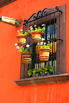 wrought iron with flower pots