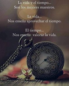 #frases #mensajes #positividad #frasesymensajes #reflexión Faith Quotes, Wisdom Quotes, Words Quotes, Me Quotes, Motivational Phrases, Inspirational Quotes, Divine Timing, Something To Remember, Images And Words