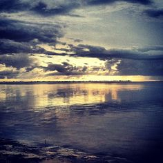 @bradentongulfislands | Surrounded by beauty after the storms cleared. #emersonpoint #palmetto #florida