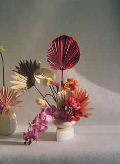 Exotic Flowers, Love Flowers, Beautiful Flowers, Ikebana Flower Arrangement, Floral Arrangements, Floral Style, Floral Design, Flower Aesthetic, Floral Centerpieces