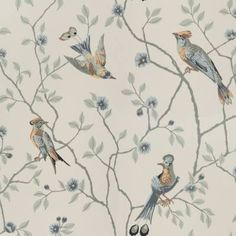 A classic pattern of interwoven branches and exotic birds in wonderful harmony, this version on a turquoise background will give the room its own dynamic. Wallpaper Series, White Wallpaper, Flower Wallpaper, Antique Wallpaper, Wallpaper Art, Turquoise Wallpaper, Turquoise Background, Gray Background, Wallpaper Online