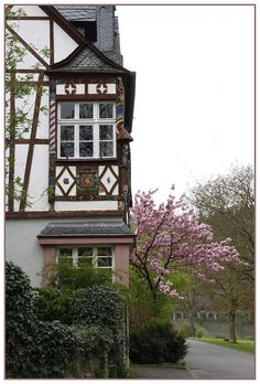 Spring in Traben-Trarbach...