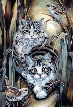 Bergsma Gallery Press :: Paintings :: Natural Elements :: Domestic Animals :: Cats :: Tabby or Not Tabby Cool Cats, I Love Cats, Crazy Cats, Image Chat, Gatos Cats, Art Et Illustration, Illustrations, Cat Drawing, Beautiful Cats