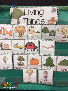 what makes these things LIVING? Ask your class and let the conversations begin!
