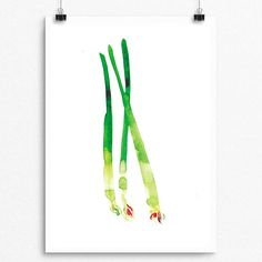 Beautifully painted with Watercolor  Scallion Series 001  Pear Tea Paperie Vegetable Scallion Series  INSTANT DIGITAL PRINT   No Physical