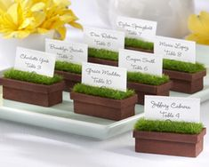 """Evergreen"" Window Planter Place Card/Photo Holder (Set of 4) at WeddingFavors.org"