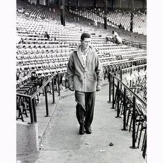 Steiner Ted Williams Walking Through Stadium Metallic 11x14 Photo