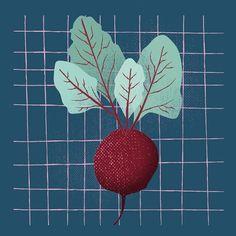 Just beet it! . . #beet #beetroot #illustration #textures