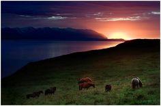 Eyjafjörður, Iceland by hkvam on flickr