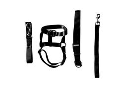 Eastop Dog Head Halter Combination 4 Parts Dog Head Collar Dog HeadCollar Combination 4 Parts *** See this great product. (This is an affiliate link) #DogCare