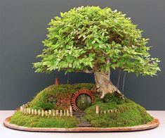 Bilbo+Baggins+Bonsai+Home+|+DudeIWantThat.com  I would LOVE to know how he did this or where you could buy something like this!