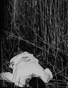 The body of Philip Mangano found with five bullets to the head in a Sheepshead Bay, Brooklyn marsh in 1951. Vincent disappeared the same day.