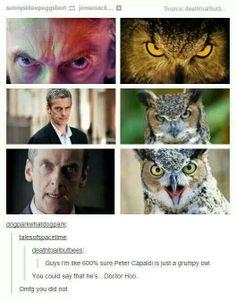 """""""Doctor Hoo"""""""