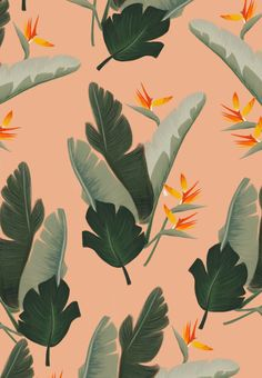 Vintage Summer tropical pattern by Cocorrina