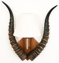 Kudu Horn Table Lamp - Designs by Luca