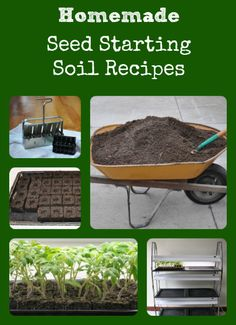 It's easy to make your own soil mixes for starting seeds, and it's a lot less expensive than buying the prepackaged mixes!