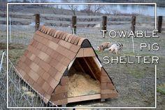Build a towable pig shelter for pastured pork on your homestead! #homesteading #pork