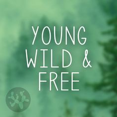 young and wild decal young wild free young wild car decal