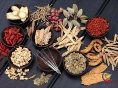 Cách chữa viêm đường tiết niệu bằng Đông Y hiệu quả Heart Healthy Recipes, Healthy Snacks, Ayurveda, Clean Eating Salate, Natural Flu Remedies, Cold And Flu Relief, Kaya, Entree Recipes, Lower Cholesterol