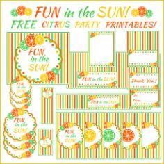 fun in the sun citrus party printable