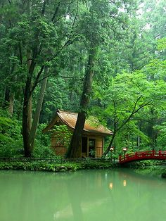Japan. It's so GREEN! I wish I were there right now, how relaxing!