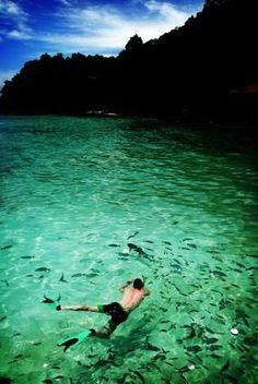 BEST BEACH FOR SNORKELING IN THE FLORIDA KEYS, Bahia Honda State Park in the lower Florida Keys.