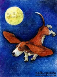 I've heard Bassets could fly at night! Canine Flying Nun  Flight of the Basset, Amazing Owl on Etsy