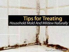 Tops for treating household mould & mildew