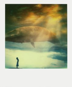 "Saatchi Online Artist: Andrew Millar; Polaroid 2013 Photography ""The test"""