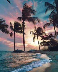 beach photography beach pictures beach outfit beach wedding beach quotes beach h. Sunset Wallpaper, Cute Wallpaper Backgrounds, Pretty Wallpapers, Nature Wallpaper, Tree Wallpaper, Iphone Wallpaper Beach, Couple Wallpaper, Wallpaper Wallpapers, Wallpaper Praia