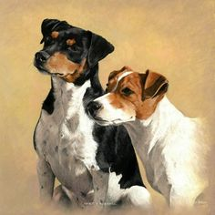 DOG PORTRAIT GALLERY 2