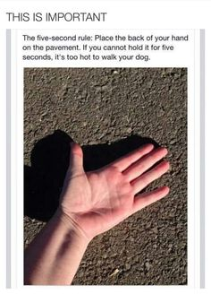 Good to know! 5 second rule and walking your dog.