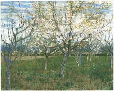 Vincent Van Gogh, Orchard with Blossoming Apricot Trees, oil on canvas, 1888