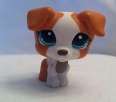 Littlest Pet Shop LPS 1093 Tan White Jack Russell Puppy Dog RARE | eBay
