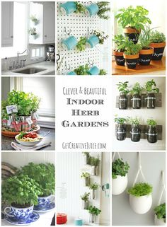 Indoor Herb Garden Ideas - creative, beautiful, and easy ideas for growing an herb garden in your kitchen