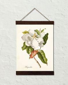 Vintage Magnolia No.1 Botanical Canvas Wall Hanging