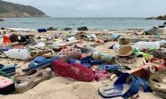 Plastic superhighway: the awful truth of our hidden ocean waste The Awful Truth, No Plastic, Plastic Beach, Sustainable Tourism, Plastic Pollution, Travel News, Tsunami, The Guardian, West Coast