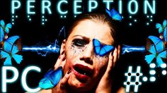 """Perception is a first-person survival horror adventure video game developed and published by The Deep End Games for PC PlayStation 4 and Xbox One. Players assume the role of Cassie a blind woman who perceives the world using echolocation as she explores a haunted house in New England. The presence haunting the house cannot be killed directly and has been compared to the enemies in other horror games such as Amnesia Outlast and Alien: Isolation. The development team contains several former…"