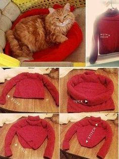 DIY Cat Tent Using An Old T-Shirt / idea  make some as a project for an animal shelter