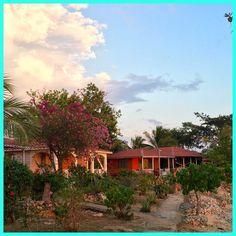 Evening light at Little Bay Cabins. . #staylittlebay #littlebay #littlebaycabins #jamaica #Negril #westmoreland #travel #beach #vacation #deals #deal #sea #ocean #sun #waves #swimming #travelgram #funinthesun #reggae #irie #rasta #praisejah #negriljamaica #jamaicabeach #nature #traveling #tourism #wanderlust #destination #adventure #pinterest #instagram #ifttt