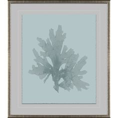 Soicher Marin - Designer Ready : Blue Ocean Coral