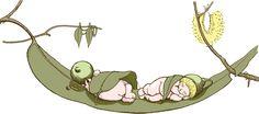 May Gibbs wonder world. Australian Animals, Australian Artists, Baby Plates, Aussie Christmas, Journal Paper, Woodland Creatures, Children's Book Illustration, Childrens Books, Illustrators