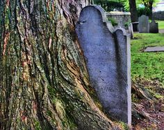 St. Matthew's Cemetery by Sally E J Hunter, via Flickr