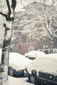Snow! (from timeenoughfordrums.blogspot.com)