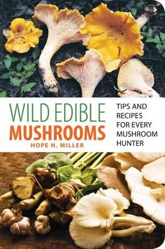 From the author of North American Mushrooms: A Field Guide to Edible and Inedible Wild Mushrooms, WILD EDIBLE MUSHROOMS aids mushroom hunters to armchair naturalists with finding, harvesting, preparin