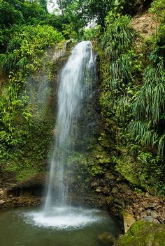 Toraille Waterfall, Soufriere, Saint Lucia, West Indies.   Flickr - Photo Sharing!